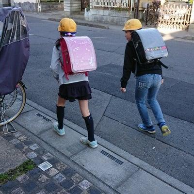 今日は上野動物園開園記念日の記事に添付されている画像
