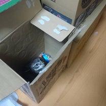 イタズラっ子のトゥルちゃん(今日は上野動物園開園記念日)の記事に添付されている画像