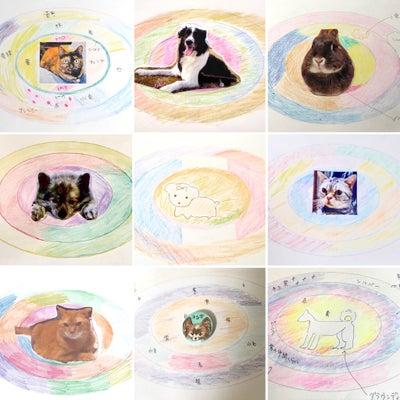 アニマルオーラリーディング講座ではオーラの色で動物性格診断ができます♪の記事に添付されている画像