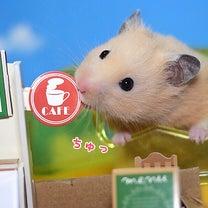 いらっしゃいませ!!追記今日は上野動物園開園記念日の記事に添付されている画像