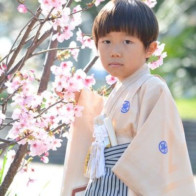 桜フォト☆2018(1)桜で七五三の記事に添付されている画像