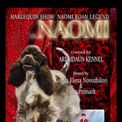 NAOMIのJAPAN INTERNATIONAL 宣材 完成٩(ˊᗜˋ*)وの記事に添付されている画像