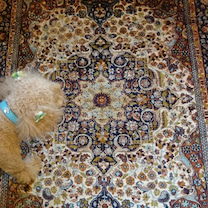 ペルシャ絨毯(゚o゚;;の記事に添付されている画像