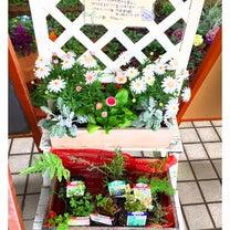 ✨2019年3月19日(火)道の駅で☆家族とランチ✨の記事に添付されている画像