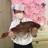 桜鯛解体ショー デイサービスセンター帝塚山の画像