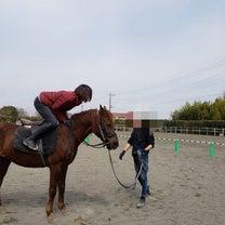 hoketsuさん調教鞍の感想★の記事に添付されている画像