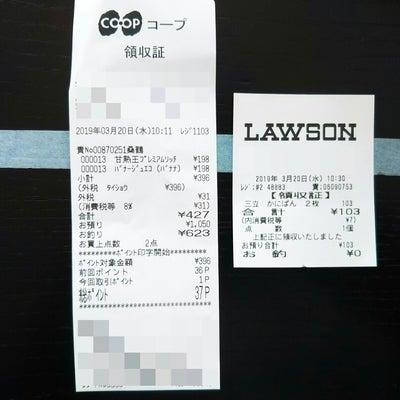 【サバイバル】13日目 残金ついになくなった~▲455円の記事に添付されている画像