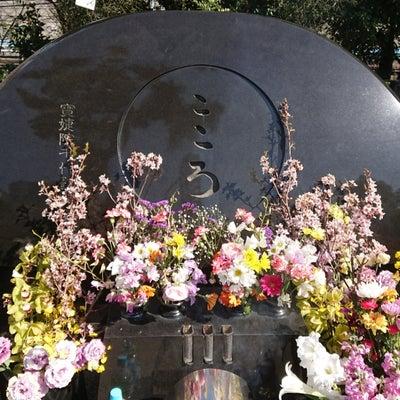 島倉千代子さんの元へ 2019/3/20の記事に添付されている画像