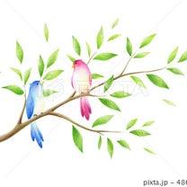 * 木の枝と小鳥のイラスト *の記事に添付されている画像