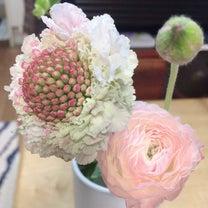 春のお花は可愛い♪︎の記事に添付されている画像
