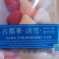 イチゴ食べ比べの記事に添付されている画像