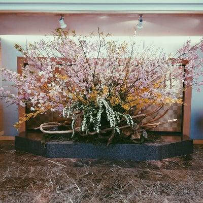 東京大神宮にて✨の記事に添付されている画像
