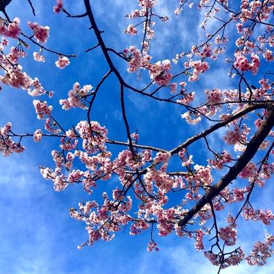 春が1番便秘になりやすいの記事に添付されている画像