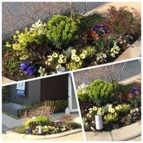 ☆花壇のプランニングから植え込み管理までの記事に添付されている画像