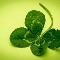 ◆ 元気が出る魔法の言葉の記事に添付されている画像