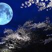 明日は…スゴイな…春分の日 天秤座満月 宇宙元旦!!!