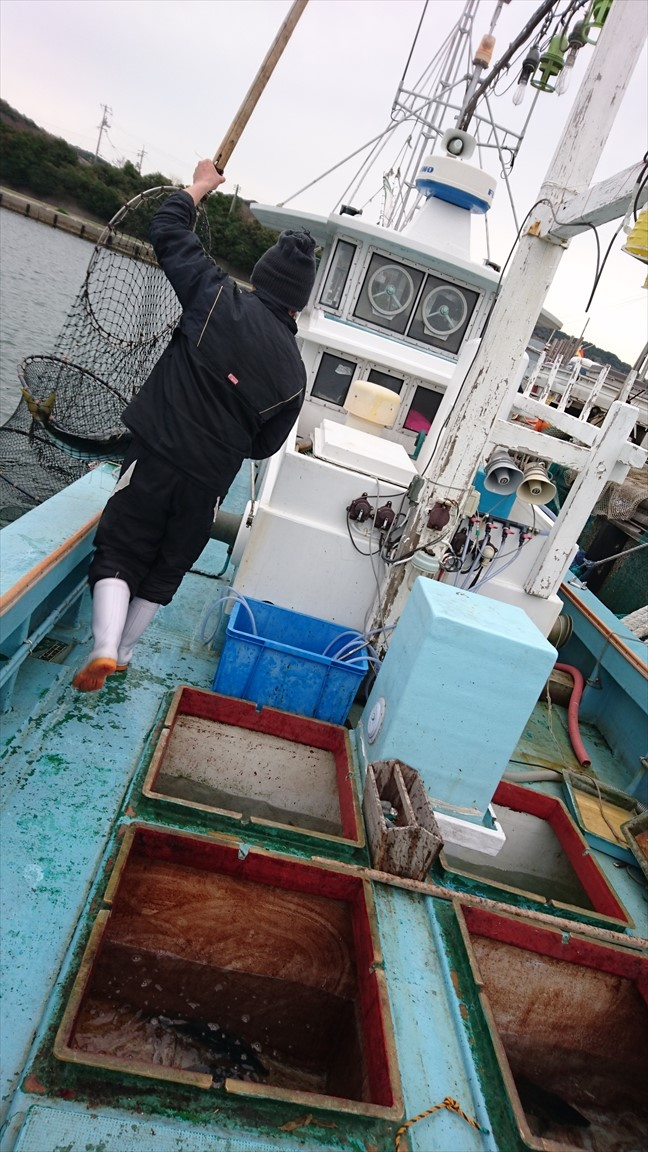 漁師直送昭和丸 日本海新潟の魚を漁師が産地直売