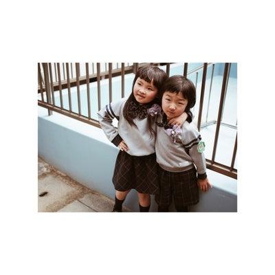 さよならぼくたちの幼稚園の記事に添付されている画像