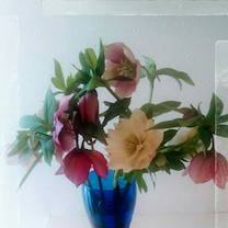 お花を頂きました‼の記事に添付されている画像