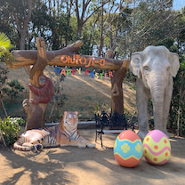 豊橋動植物園のんほいパークの記事に添付されている画像