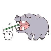 プラーク(歯垢)ができる主な原因は、〇〇です!の記事に添付されている画像