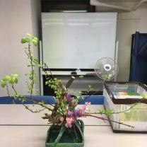 学校のお花の記事に添付されている画像