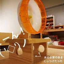 ニコさんの新タワーの記事に添付されている画像
