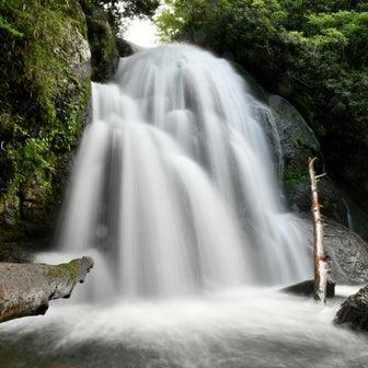 滝本川本谷 ナベラゴ滝15m 那智勝浦町