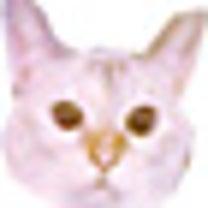 おにくんブログ「オレ様の椅子」の記事に添付されている画像