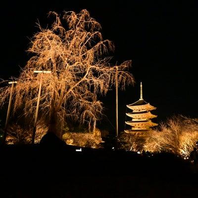 えがおナラ、キョウトいふひも、ナゴヤかに(京都編)の記事に添付されている画像