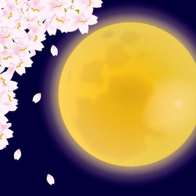 3月21日春分=宇宙元旦ゲートが開きすべての源に繋がりハーモニーを奏でる天秤座のの記事に添付されている画像