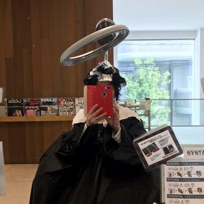 じゃーん!ショートヘア‼️追記有り(^◇^;)の記事に添付されている画像
