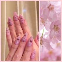 桜開花の記事に添付されている画像