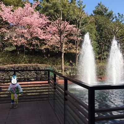 2019.3月♡お祝いディズニー旅行記⑥シェフミッキー到着!の記事に添付されている画像