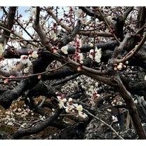 3〜4月は変化の季節と節約の関係の記事に添付されている画像