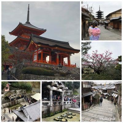 【そうだ、仕事以外で京都へ行こう!】の記事に添付されている画像