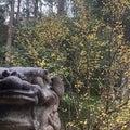 二十四節気春分の産土神社参拝の画像
