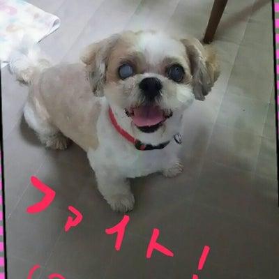終わったぁ~(^ー^)ノの記事に添付されている画像