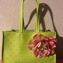 春のお出かけバッグ  星野陽子アーティスト作品の記事に添付されている画像