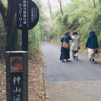 箱根神社〜その3   九頭龍神社  大切なメッセージの記事に添付されている画像