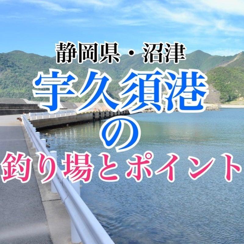 静岡 釣り ブログ