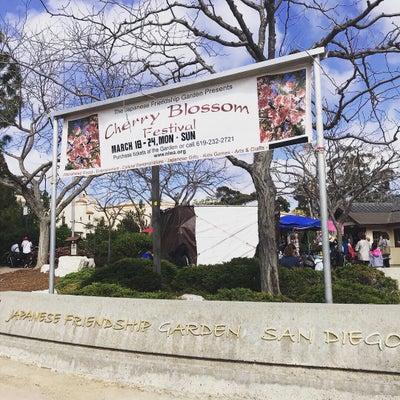 バルボアパーク日本庭園の桜とコストコのカリフラワーピザの記事に添付されている画像