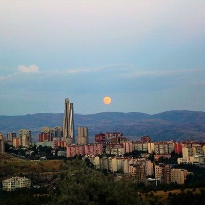 満月。の記事に添付されている画像
