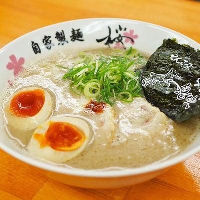無化調自家製麺が人気!とんこつラーメン店の2号店「桜息吹」パトロール♪・・・西宮の記事に添付されている画像