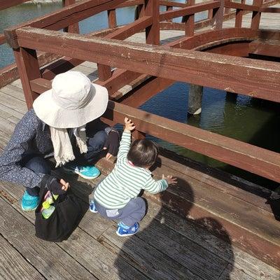 水遊びデビュー&成長!!の記事に添付されている画像