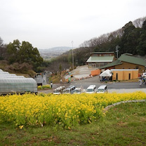 第32回瀬戸内倉敷ツーデーマーチ2日目 30km その2の記事に添付されている画像