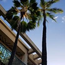 Enjoy Hawaii!の記事に添付されている画像