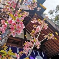 『宇宙元旦×満月×東京大神宮』の記事に添付されている画像