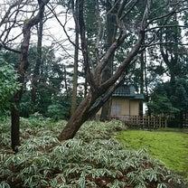 日本美に触れるの記事に添付されている画像