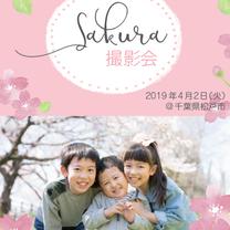 【募集開始!】ふんわり桜撮影会の記事に添付されている画像